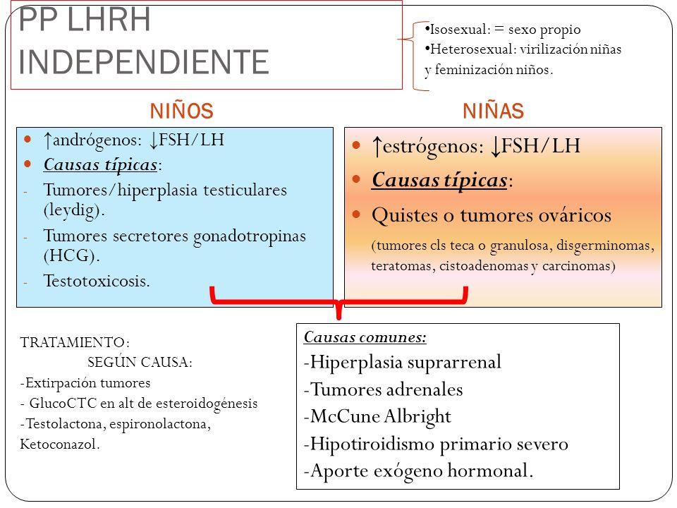 PP LHRH INDEPENDIENTE NIÑOS andrógenos: FSH/LH Causas típicas: - Tumores/hiperplasia testiculares (leydig). - Tumores secretores gonadotropinas (HCG).