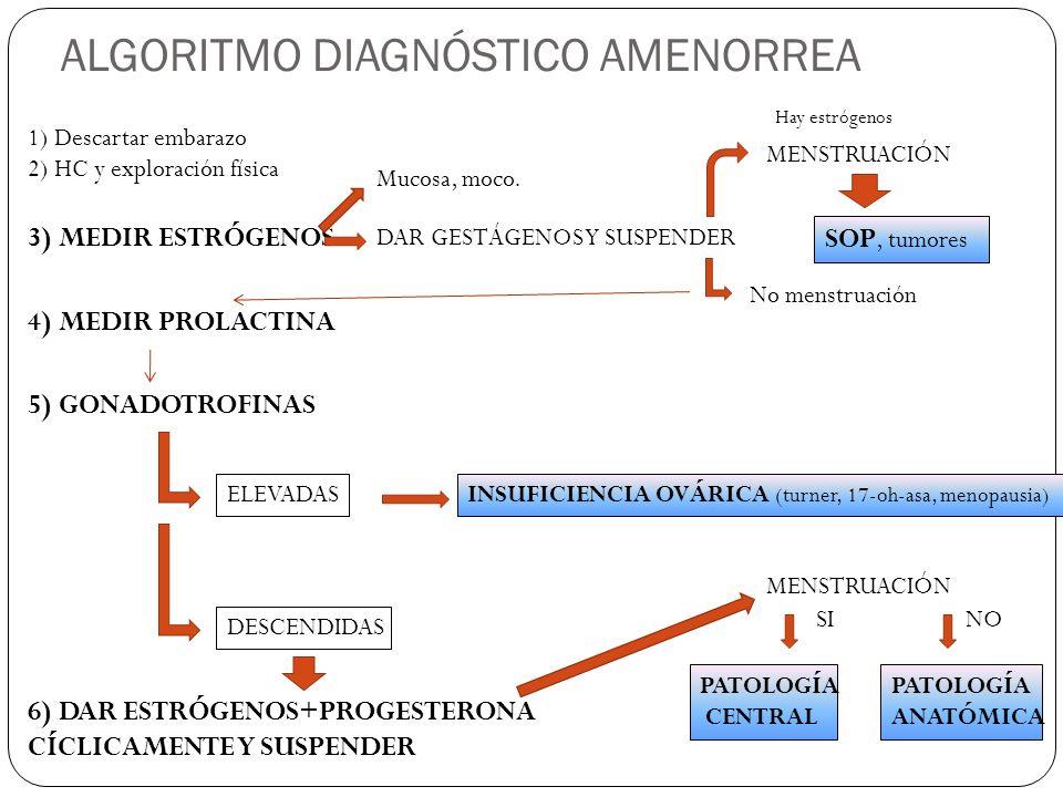 ALGORITMO DIAGNÓSTICO AMENORREA 1) Descartar embarazo 2) HC y exploración física 3) MEDIR ESTRÓGENOS Mucosa, moco. DAR GESTÁGENOS Y SUSPENDER MENSTRUA