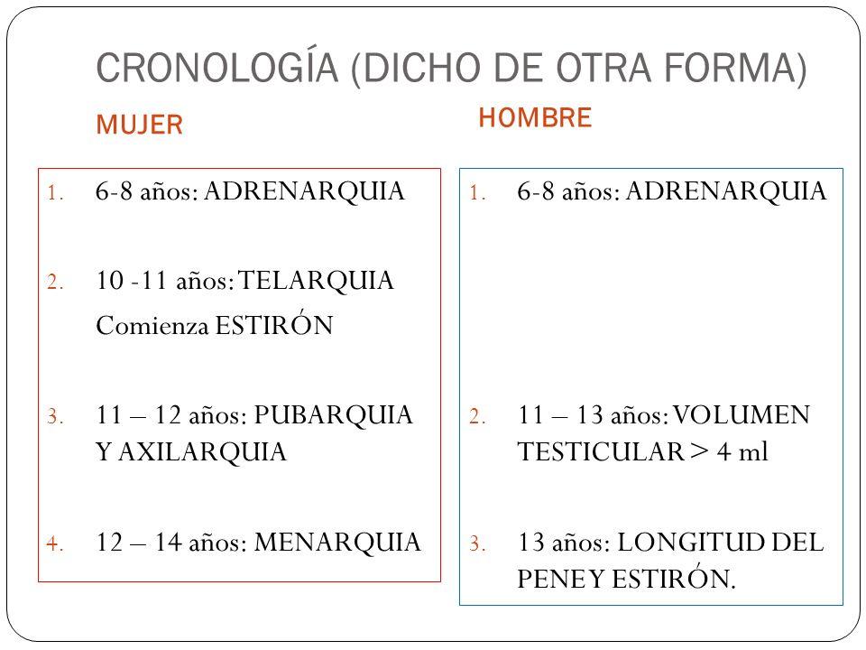 CRONOLOGÍA (DICHO DE OTRA FORMA) MUJER HOMBRE 1. 6-8 años: ADRENARQUIA 2. 10 -11 años: TELARQUIA Comienza ESTIRÓN 3. 11 – 12 años: PUBARQUIA Y AXILARQ