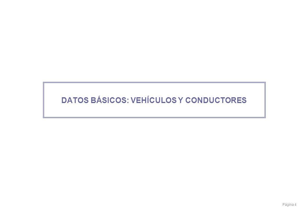 Página 4 DATOS BÁSICOS: VEHÍCULOS Y CONDUCTORES
