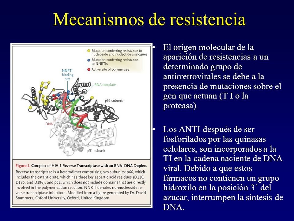 Mecanismos de resistencia El origen molecular de la aparición de resistencias a un determinado grupo de antirretrovirales se debe a la presencia de mu