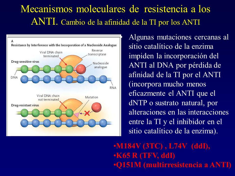 Mecanismos moleculares de resistencia a los ANTI. Cambio de la afinidad de la TI por los ANTI Algunas mutaciones cercanas al sítio catalítico de la en