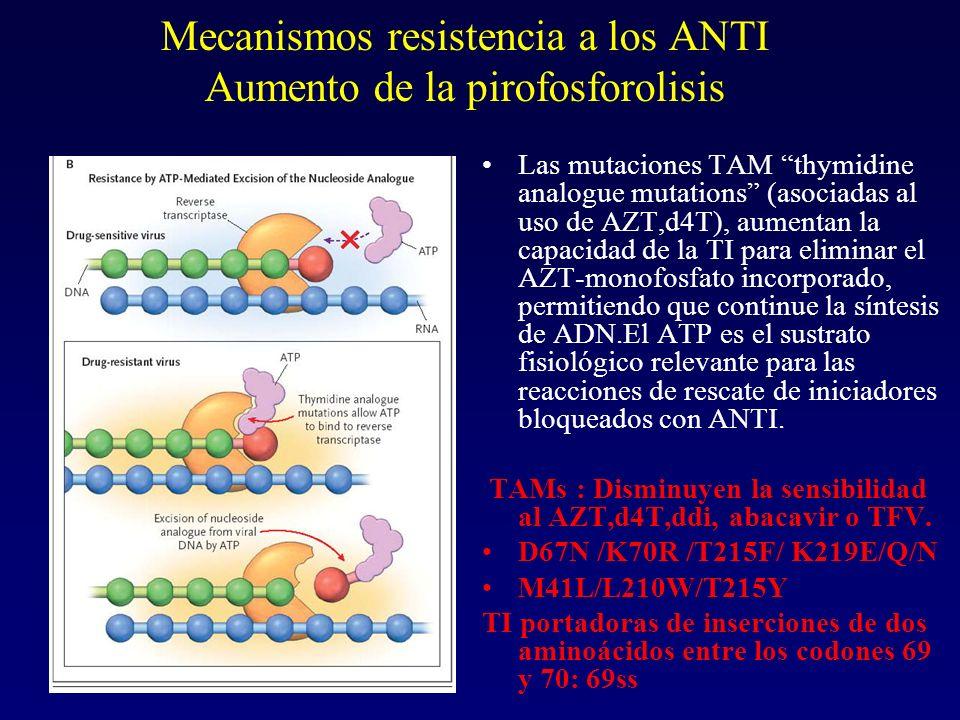 Mecanismos resistencia a los ANTI Aumento de la pirofosforolisis Las mutaciones TAM thymidine analogue mutations (asociadas al uso de AZT,d4T), aument