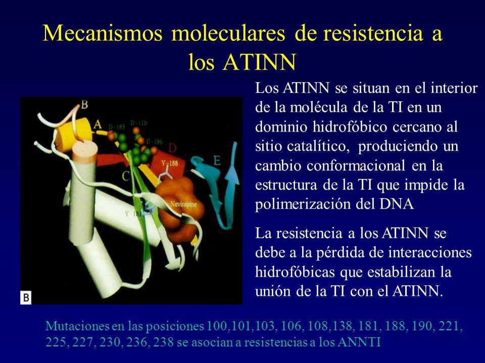 Mecanismos moleculares de resistencia a los ATINN Los ATINN se situan en el interior de la molécula de la TI en un dominio hidrofóbico cercano al siti
