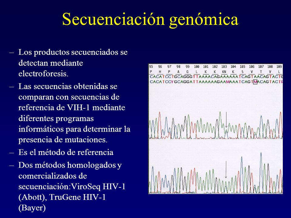 Secuenciación genómica –Los productos secuenciados se detectan mediante electroforesis. –Las secuencias obtenidas se comparan con secuencias de refere