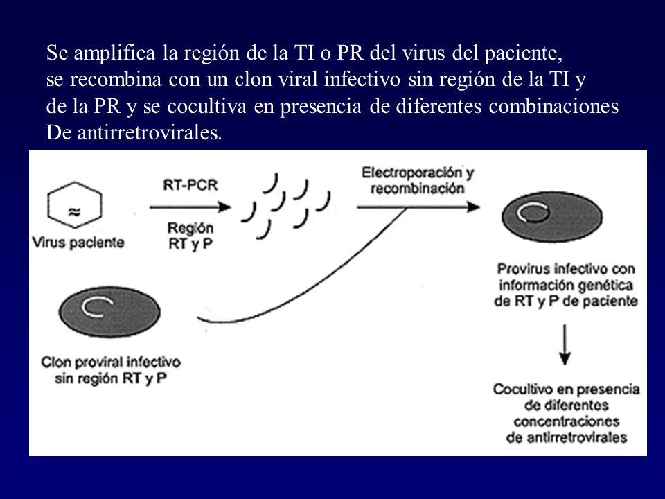 Se amplifica la región de la TI o PR del virus del paciente, se recombina con un clon viral infectivo sin región de la TI y de la PR y se cocultiva en