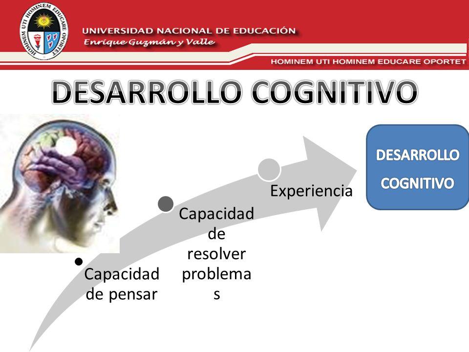 Capacidad de pensar Capacidad de resolver problemas Experiencia