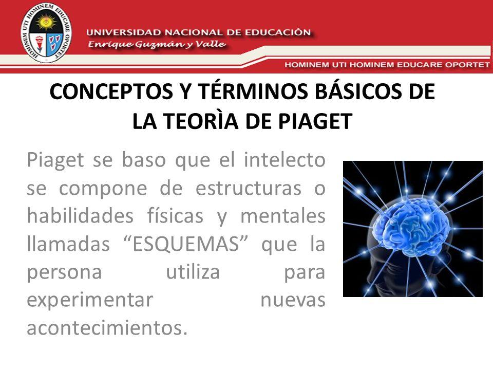 CONCEPTOS Y TÉRMINOS BÁSICOS DE LA TEORÌA DE PIAGET Piaget se baso que el intelecto se compone de estructuras o habilidades físicas y mentales llamada