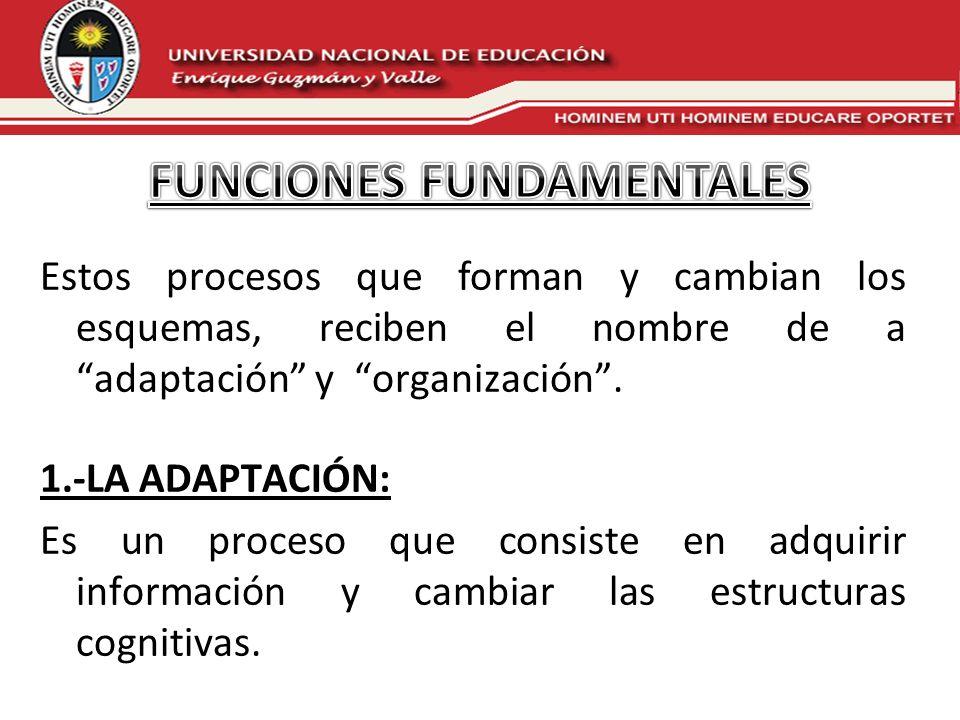 Estos procesos que forman y cambian los esquemas, reciben el nombre de a adaptación y organización. 1.-LA ADAPTACIÓN: Es un proceso que consiste en ad