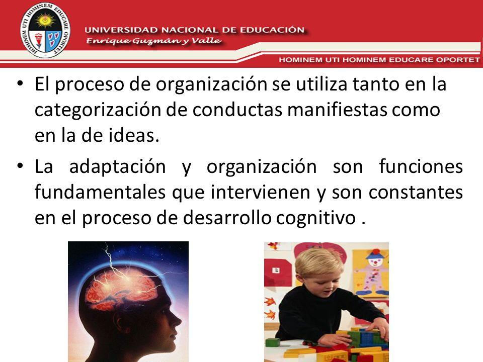 El proceso de organización se utiliza tanto en la categorización de conductas manifiestas como en la de ideas. La adaptación y organización son funcio