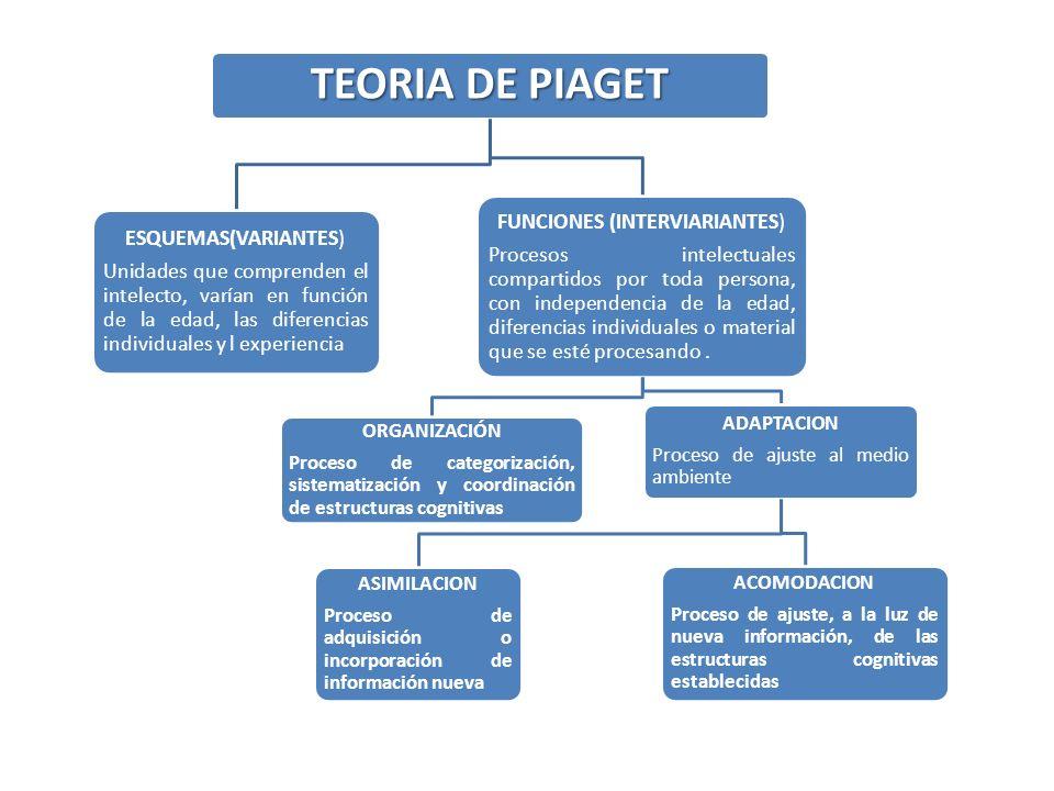 TEORIA DE PIAGET ESQUEMAS(VARIANTES) Unidades que comprenden el intelecto, varían en función de la edad, las diferencias individuales y l experiencia