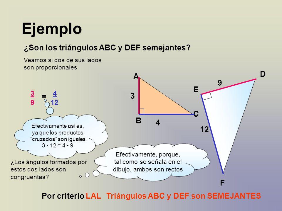 Ejemplo ¿Son los triángulos ABC y DEF semejantes? A B C 4 3 D E F 9 12 Veamos si dos de sus lados son proporcionales 3 9 = 4 12 Efectivamente así es,