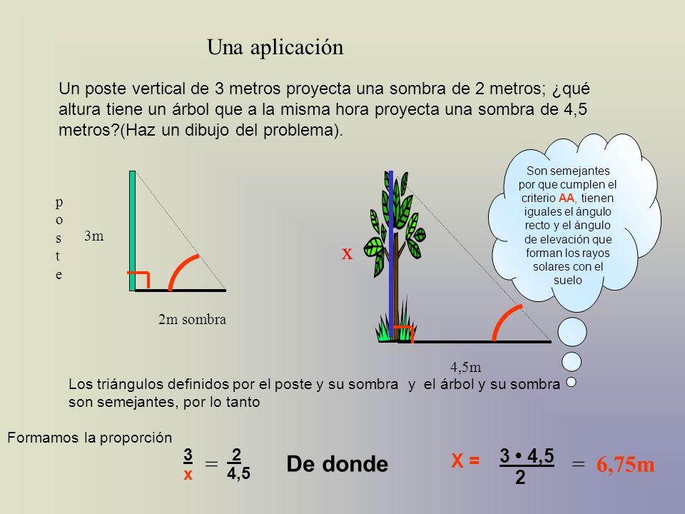 Un poste vertical de 3 metros proyecta una sombra de 2 metros; ¿qué altura tiene un árbol que a la misma hora proyecta una sombra de 4,5 metros?(Haz u