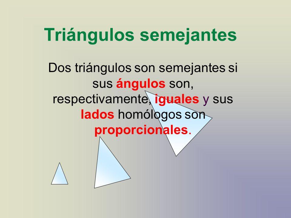 Triángulos semejantes Dos triángulos son semejantes si sus ángulos son, respectivamente, iguales y sus lados homólogos son proporcionales.