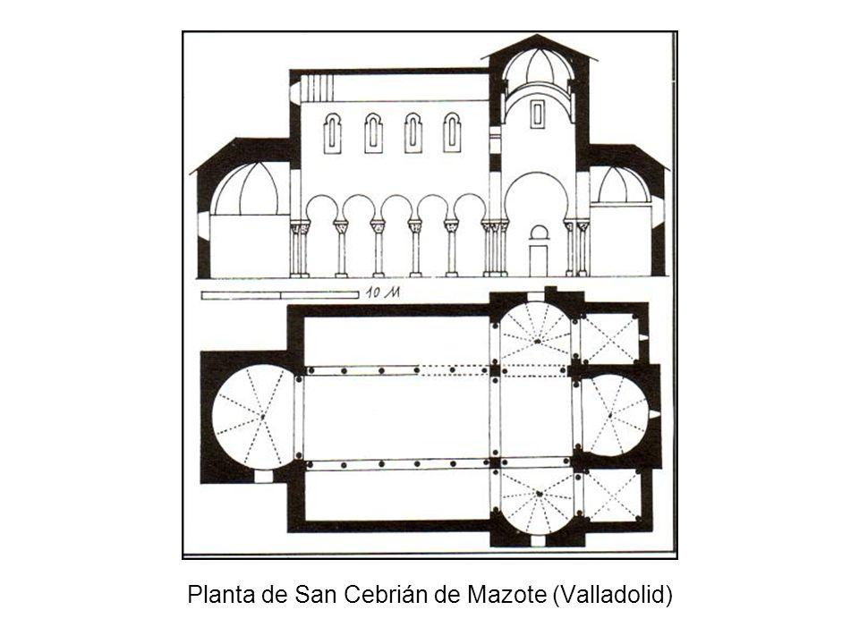 Planta de San Cebrián de Mazote (Valladolid)