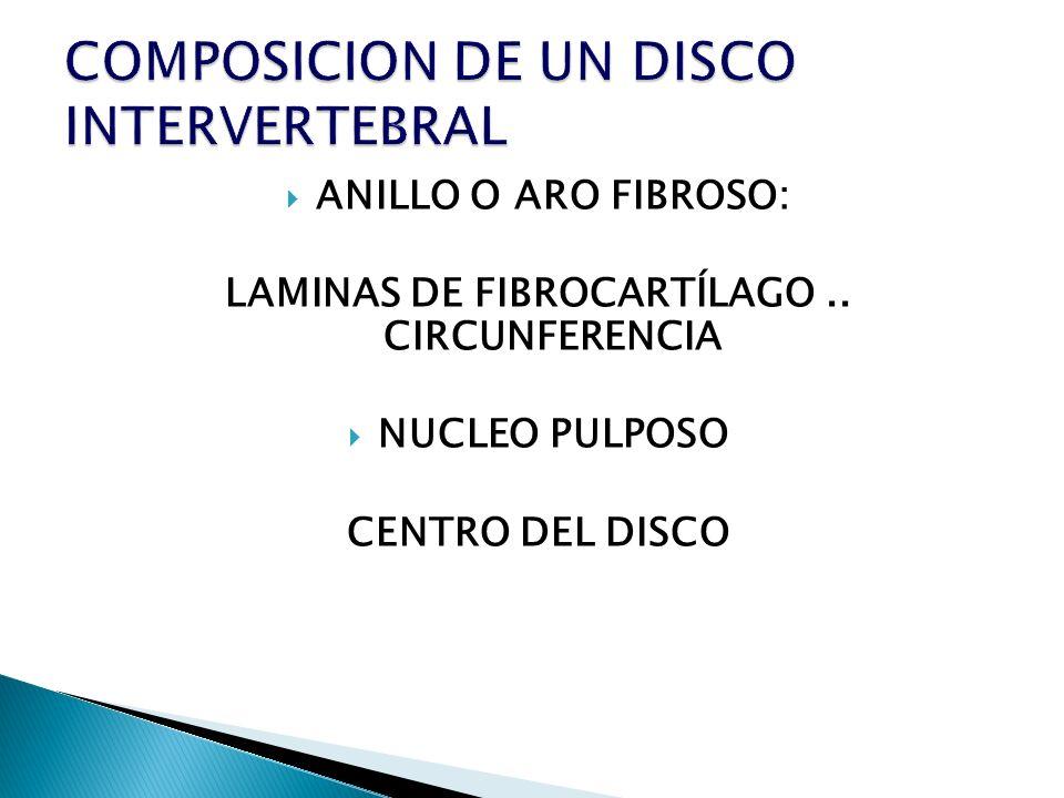 ANILLO O ARO FIBROSO: LAMINAS DE FIBROCARTÍLAGO.. CIRCUNFERENCIA NUCLEO PULPOSO CENTRO DEL DISCO