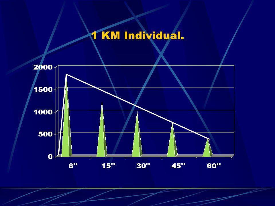 1 KM Individual.