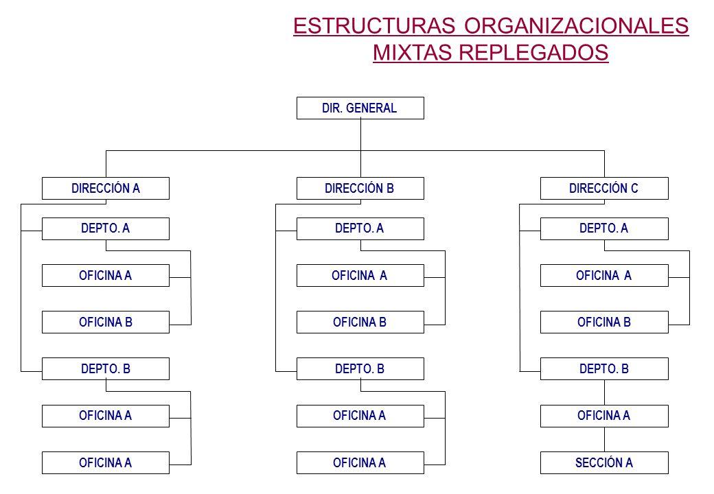 ESTRUCTURAS ORGANIZACIONALES MIXTAS REPLEGADOS DIR.