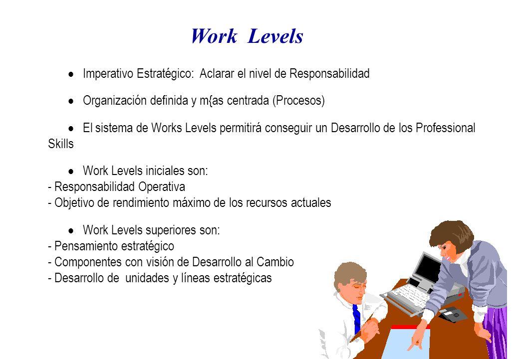 Work Levels Imperativo Estratégico: Aclarar el nivel de Responsabilidad Organización definida y m{as centrada (Procesos) El sistema de Works Levels permitirá conseguir un Desarrollo de los Professional Skills Work Levels iniciales son: - Responsabilidad Operativa - Objetivo de rendimiento máximo de los recursos actuales Work Levels superiores son: - Pensamiento estratégico - Componentes con visión de Desarrollo al Cambio - Desarrollo de unidades y líneas estratégicas