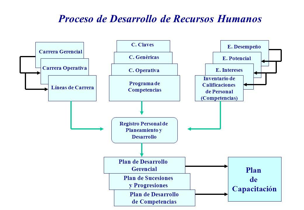 Plan de Desarrollo de Competencias Plan de Sucesiones y Progresiones E.