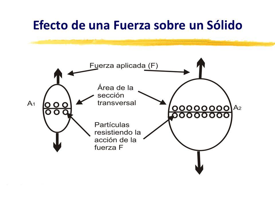 La magnitud de la reacción en cada enlace depende de la magnitud de la fuerza aplicada y de la cantidad de partículas que resisten la acción de esa fuerza.