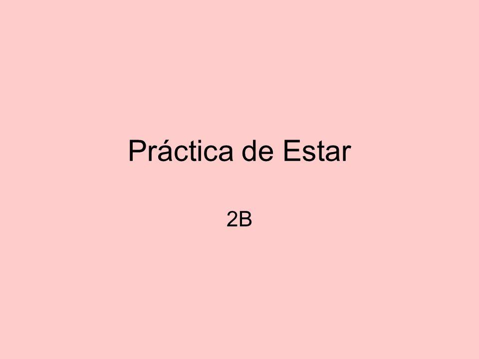 Práctica de Estar 2B
