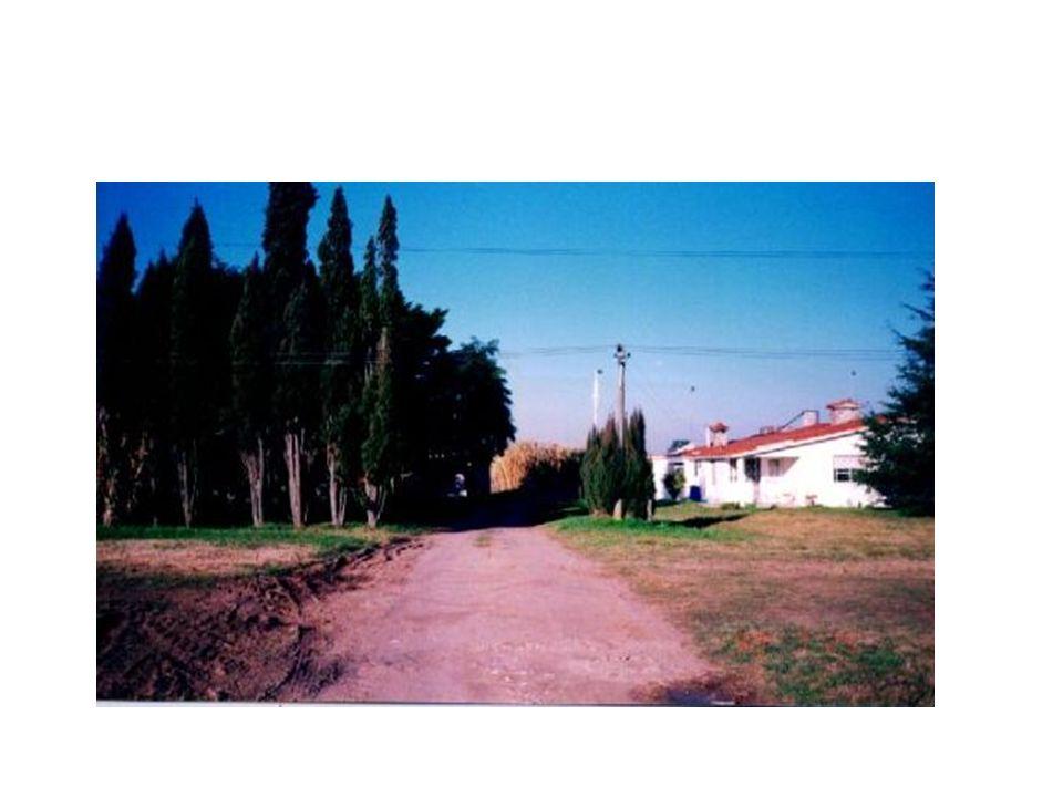 Escenario para aquel entonces (año 1999) No existía ley de parques industriales aprobada Había que pasar toda la tierra de Rural a sub- urbana Fuimos creando consciencia a nivel de junta departamental de esta necesidad