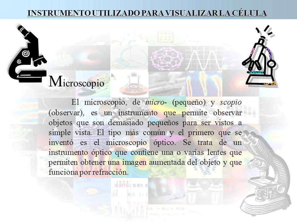 INSTRUMENTO UTILIZADO PARA VISUALIZAR LA CÉLULA M icroscopio El microscopio, de micro- (pequeño) y scopio (observar), es un instrumento que permite ob