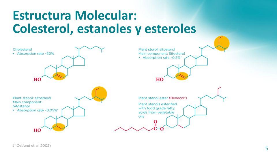 Eficacia Comprobada 4 Plant stanol ester has been granted strong health claims by the Comision de la Union Europea FDA E.U.A Guias de organismos ofici