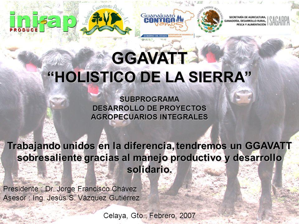 GGAVATT HOLISTICO DE LA SIERRA SUBPROGRAMA DESARROLLO DE PROYECTOS AGROPECUARIOS INTEGRALES Trabajando unidos en la diferencia, tendremos un GGAVATT s