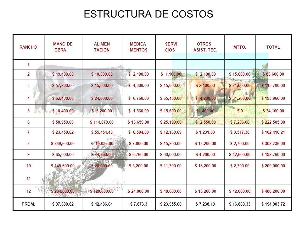 ESTRUCTURA DE COSTOS RANCHO MANO DE OBRA ALIMEN TACION MEDICA MENTOS SERVI CIOS OTROS ASIST. TEC. MTTO.TOTAL 1 2$ 49,400.00$ 10,000.00$ 2,400.00$ 1,10