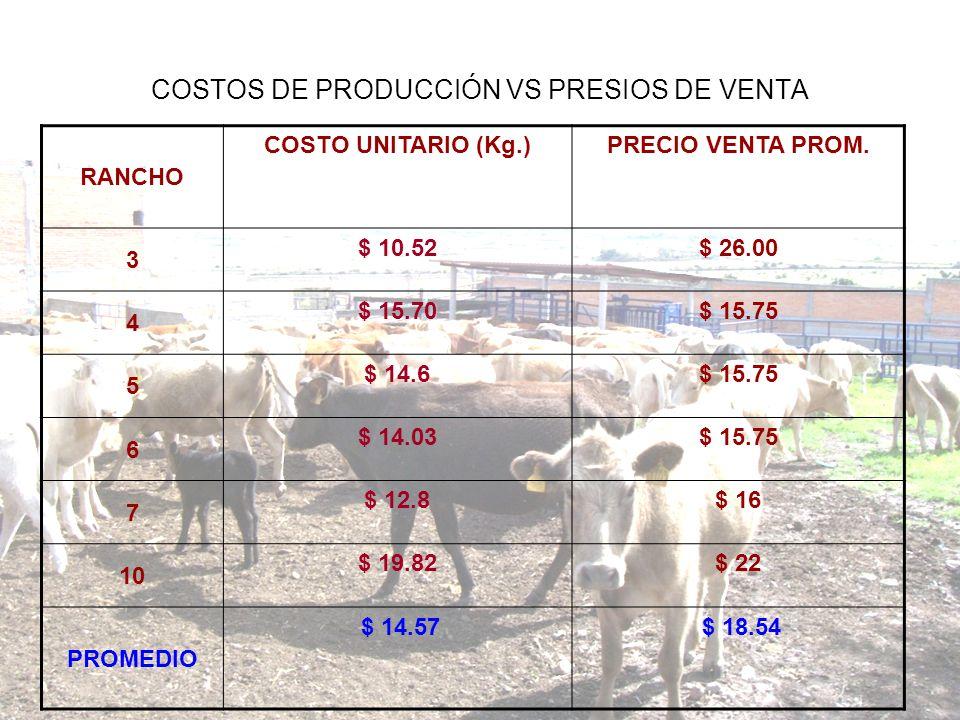 COSTOS DE PRODUCCIÓN VS PRESIOS DE VENTA RANCHO COSTO UNITARIO (Kg.)PRECIO VENTA PROM. 3 $ 10.52$ 26.00 4 $ 15.70$ 15.75 5 $ 14.6$ 15.75 6 $ 14.03$ 15