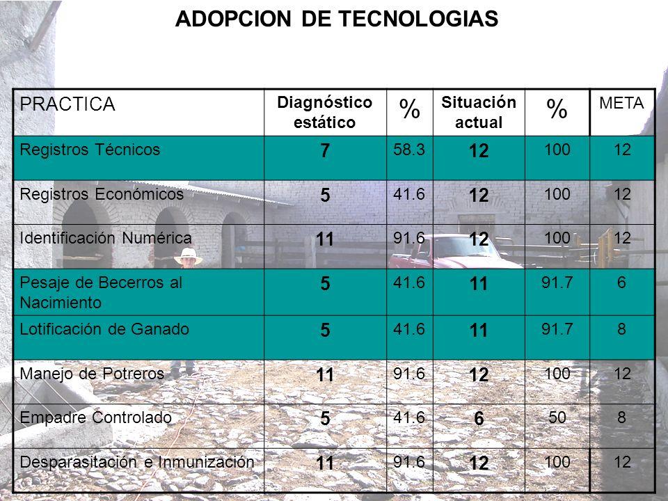 ADOPCION DE TECNOLOGIAS PRACTICA Diagnóstico estático % Situación actual % META Registros Técnicos 7 58.3 12 10012 Registros Económicos 5 41.6 12 1001