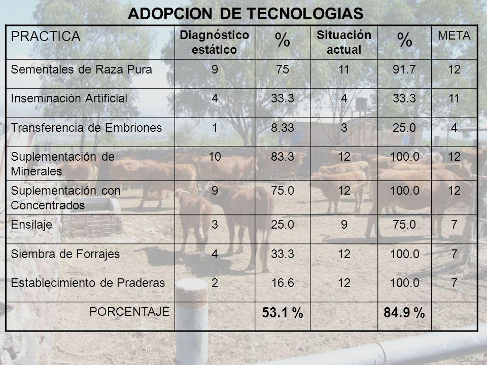 ADOPCION DE TECNOLOGIAS PRACTICA Diagnóstico estático % Situación actual % META Sementales de Raza Pura9751191.712 Inseminación Artificial433.34 11 Tr