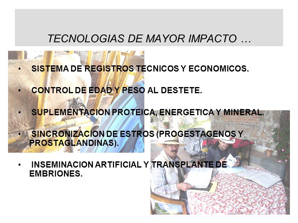 TECNOLOGIAS DE MAYOR IMPACTO … SISTEMA DE REGISTROS TECNICOS Y ECONOMICOS. CONTROL DE EDAD Y PESO AL DESTETE. SUPLEMENTACION PROTEICA, ENERGETICA Y MI
