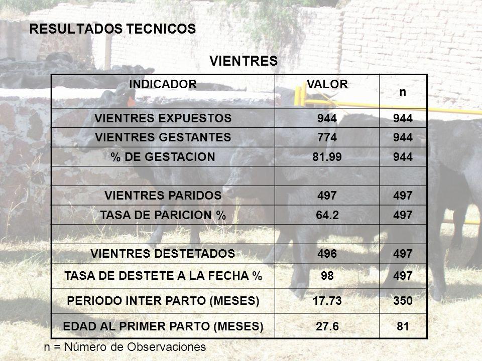 RESULTADOS TECNICOS VIENTRES INDICADOR VALOR n VIENTRES EXPUESTOS944 VIENTRES GESTANTES774944 % DE GESTACION81.99944 VIENTRES PARIDOS497 TASA DE PARIC