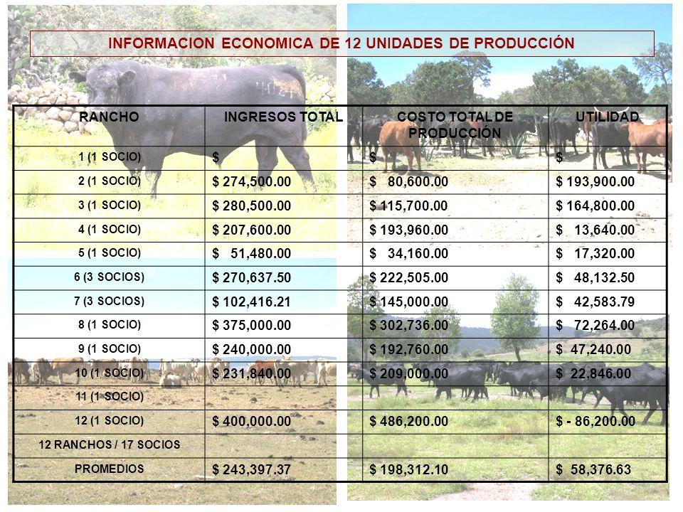 INFORMACION ECONOMICA DE 12 UNIDADES DE PRODUCCIÓN RANCHOINGRESOS TOTALCOSTO TOTAL DE PRODUCCIÓN UTILIDAD 1 (1 SOCIO) $$$ 2 (1 SOCIO) $ 274,500.00$ 80