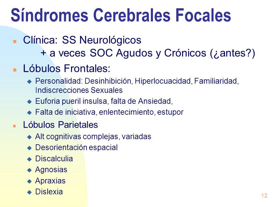 12 Síndromes Cerebrales Focales n Clínica: SS Neurológicos + a veces SOC Agudos y Crónicos (¿antes?) n Lóbulos Frontales: u Personalidad: Desinhibició