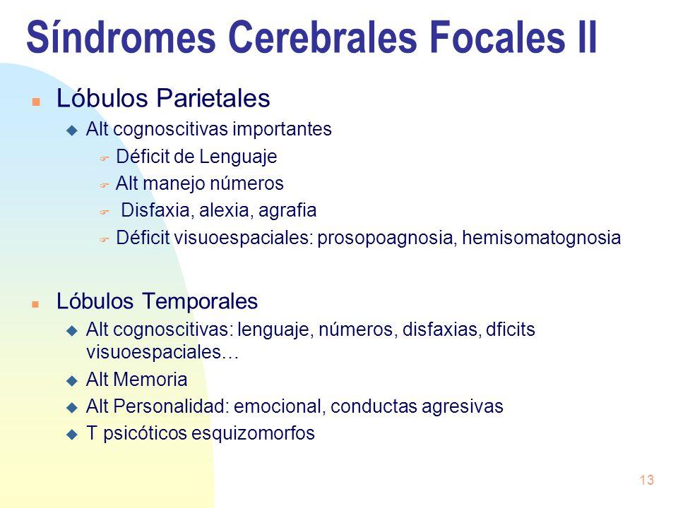 13 Síndromes Cerebrales Focales II n Lóbulos Parietales u Alt cognoscitivas importantes F Déficit de Lenguaje F Alt manejo números F Disfaxia, alexia,