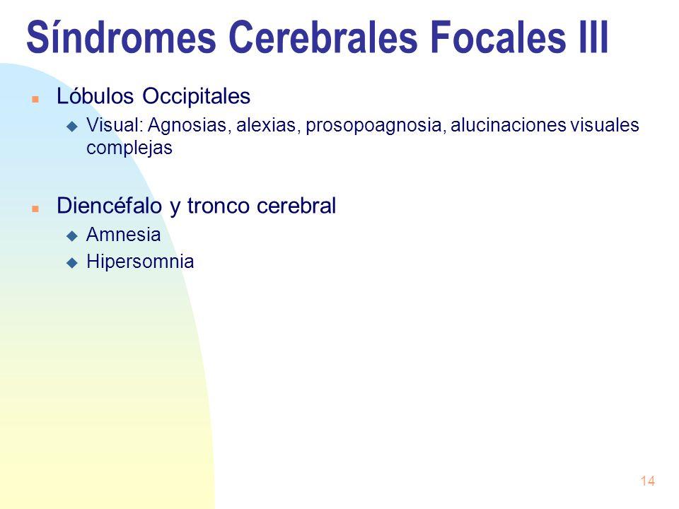 14 Síndromes Cerebrales Focales III n Lóbulos Occipitales u Visual: Agnosias, alexias, prosopoagnosia, alucinaciones visuales complejas n Diencéfalo y