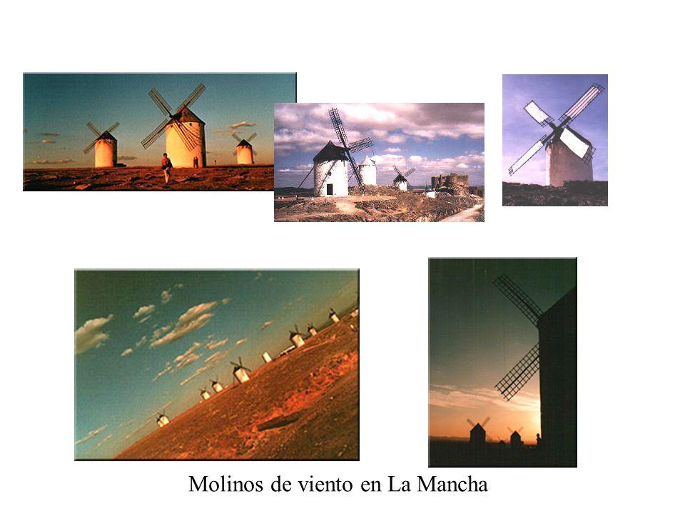 MIGUEL DE CERVANTES SAAVEDRA (1547-1616) RENACIMIENTO BARROCO El ingenioso hidalgo D. Quijote de la Mancha (1605-1615) PARODIA DE LOS LIBROS DE CABALL