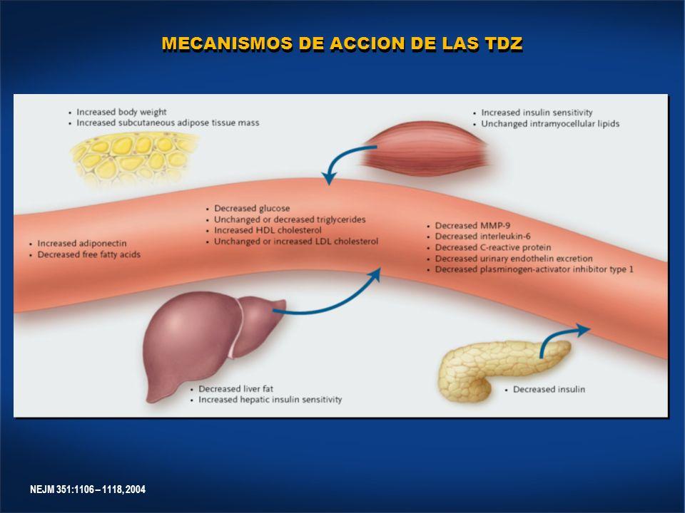 NEJM 351:1106 – 1118, 2004 MECANISMOS DE ACCION DE LAS TDZ