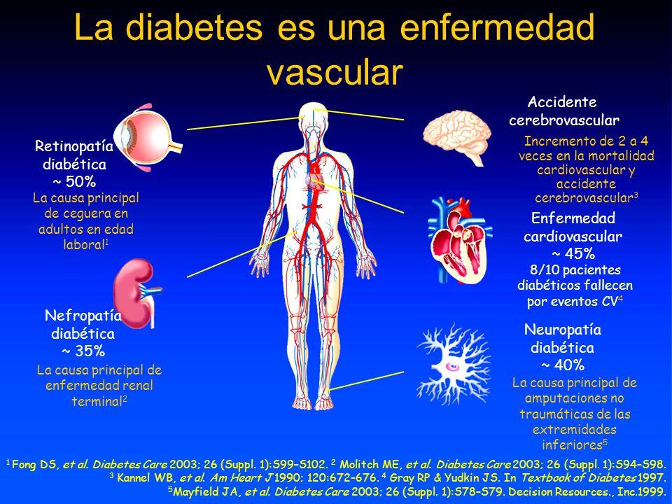 La diabetes es una enfermedad vascular Retinopatía diabética ~ 50% La causa principal de ceguera en adultos en edad laboral 1 Nefropatía diabética ~ 35% La causa principal de enfermedad renal terminal 2 Enfermedad cardiovascular ~ 45% Accidente cerebrovascular Incremento de 2 a 4 veces en la mortalidad cardiovascular y accidente cerebrovascular 3 Neuropatía diabética ~ 40% La causa principal de amputaciones no traumáticas de las extremidades inferiores 5 8/10 pacientes diabéticos fallecen por eventos CV 4 1 Fong DS, et al.