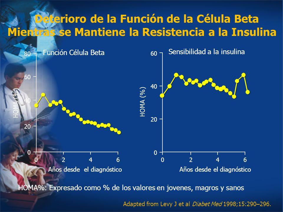 Años desde el diagnóstico Adapted from Levy J et al Diabet Med 1998;15:290–296. 0 40 60 HOMA (%) 20 0 0 40 60 80 HOMA (%) 20 2460246 Años desde el dia