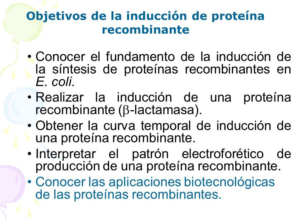 Conocer el fundamento de la inducción de la síntesis de proteínas recombinantes en E. coli. Realizar la inducción de una proteína recombinante ( -lact
