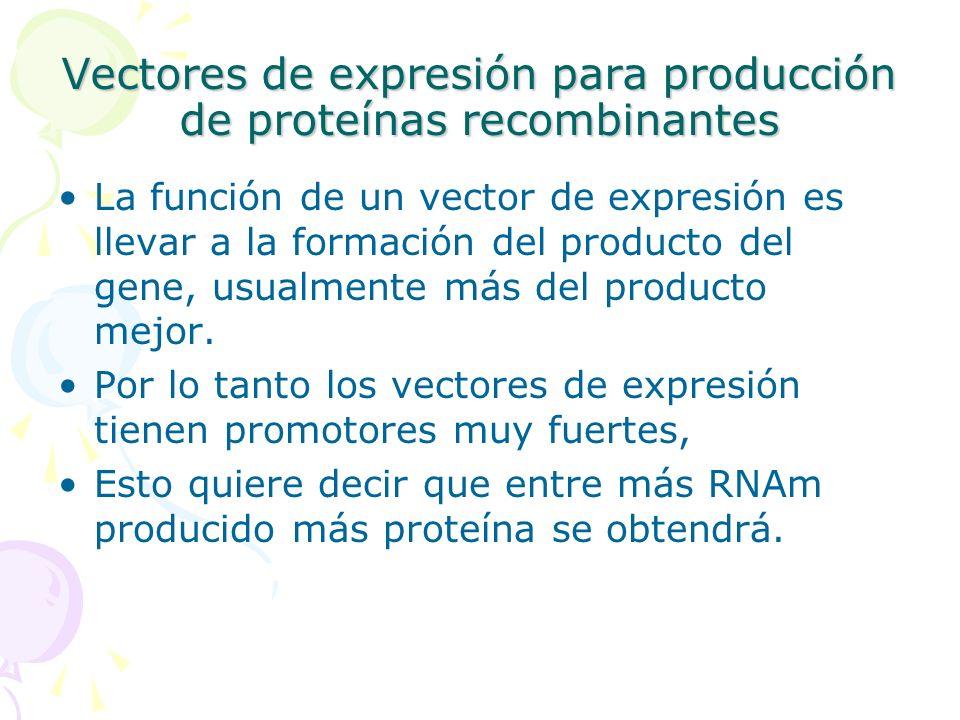 Vectores de expresión para producción de proteínas recombinantes La función de un vector de expresión es llevar a la formación del producto del gene,