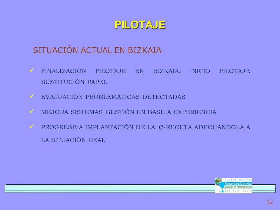 12 PILOTAJE SITUACIÓN ACTUAL EN BIZKAIA FINALIZACIÓN PILOTAJE EN BIZKAIA.