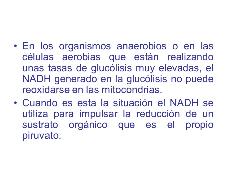 En los organismos anaerobios o en las células aerobias que están realizando unas tasas de glucólisis muy elevadas, el NADH generado en la glucólisis no puede reoxidarse en las mitocondrias.