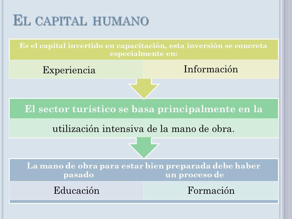 E L CAPITAL HUMANO La mano de obra para estar bien preparada debe haber pasado un proceso de EducaciónFormación El sector turístico se basa principalm