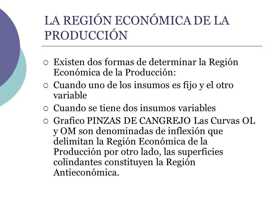 LA REGIÓN ECONÓMICA DE LA PRODUCCIÓN Existen dos formas de determinar la Región Económica de la Producción: Cuando uno de los insumos es fijo y el otr
